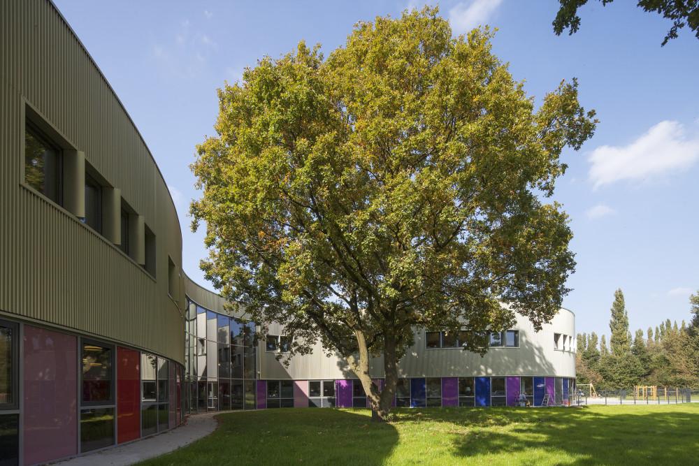 brede school grote boom